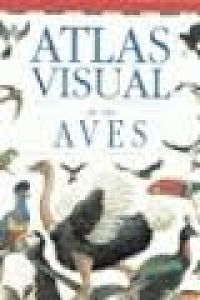 Atlas visual de las aves